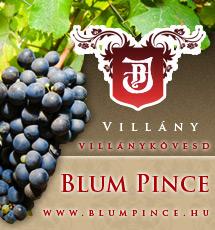 Blum Pincészet